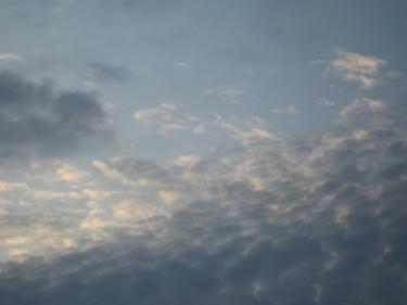 26_08_09-1.jpg