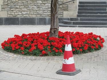 cône de chantier,cône de lübeck,fleur,rouge,ville,urbain