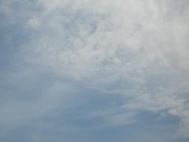 09_08_09-1.jpg